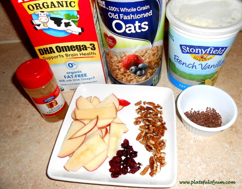 Apple Cranberry Oats